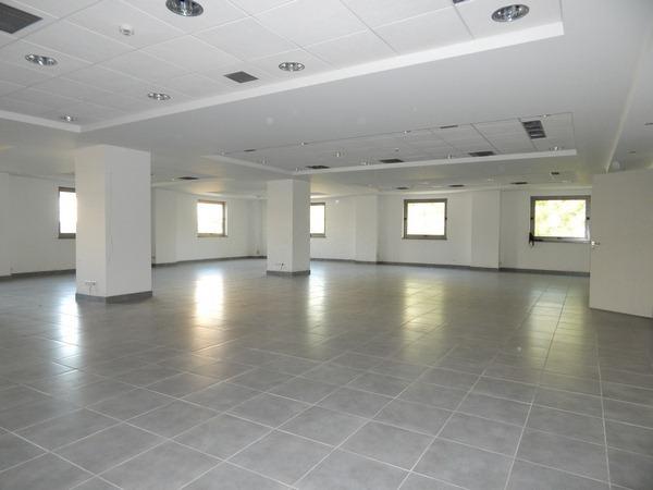 Ενοικίαση επαγγελματικού χώρου Μοσχάτο Αίθουσα 450 τ.μ. νεόδμητο