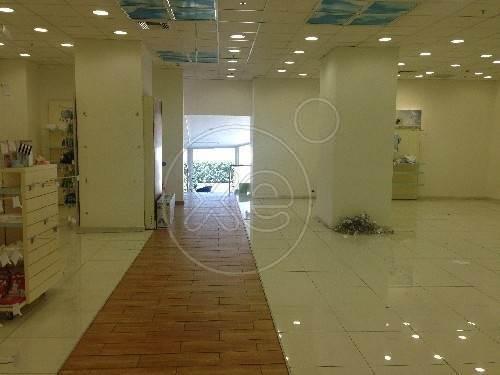 Ενοικίαση επαγγελματικού χώρου Αθήνα (Άγιος Ελευθέριος) Κτίριο 2300 τ.μ. ανακαινισμένο