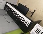 Ηλ. Πιάνο Καινούργιο - Χολαργός