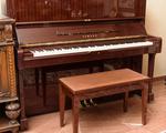 χρονολόγηση Yamaha πιάνα ραντεβού σαφάρι