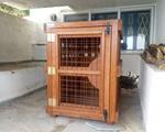 5852a92c45d0 Κλουβιά - Αξεσουάρ για Ζώα - Αγγελιες