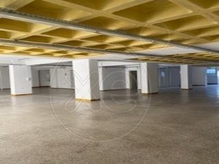 Ενοικίαση επαγγελματικού χώρου Μαρούσι (Εργατικές Πολυκατοικίες) Αποθήκη 375 τ.μ. ανακαινισμένο