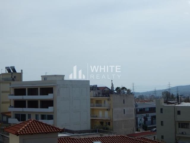 Εικόνα 4 από 10 - Επαγγελματικό κτίριο 705 τ.μ. -  Γέρακας -  Κέντρο