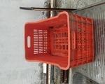 ΒΙΟΛΟΓΙΚΑ προϊόντα - Νομός Ηλείας