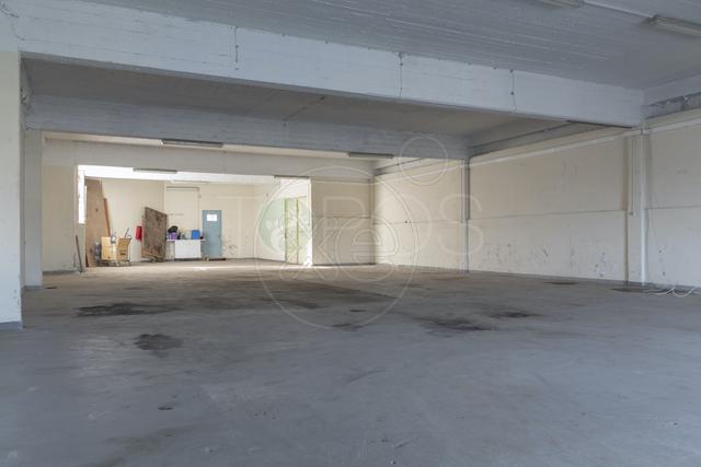Ενοικίαση επαγγελματικού χώρου Αθήνα (Ελαιώνας) Γραφείο 265 τ.μ.