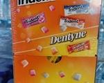 Τσίχλες Trident Box 500τμχ - Ιλιον (Νέα Λιόσια)