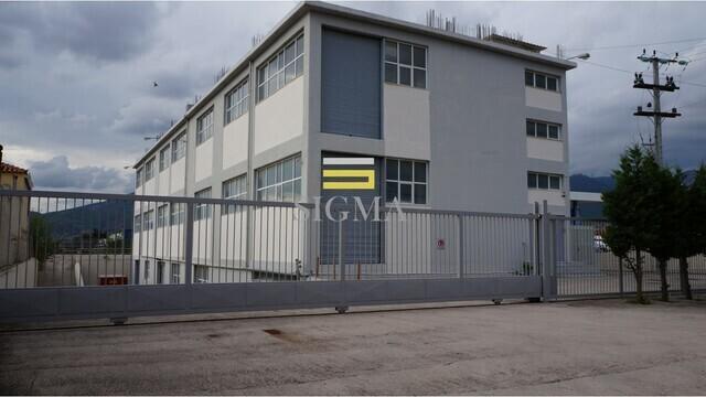 Ενοικίαση επαγγελματικού χώρου Αχαρνές (Λαθέα) Βιομηχανικός χώρος 3850 τ.μ.