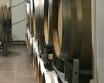 Βαρέλια κρασιού πωλούνται - Νομός Βοιωτίας